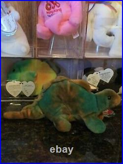 Authentic Beautiful RARE Coloring STEG the Dinosaur 3rd/1st Gen Ty Beanie Baby