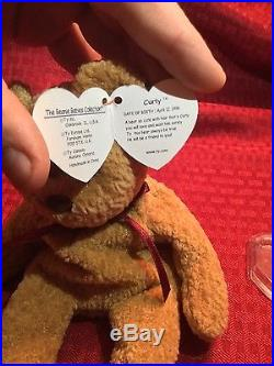 EXTREMELY RARE Ty Beanie Baby'Curly' Retired Bear with MANY Errors-MINT-GEM
