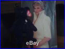 RARE 1ST Edition Princess Diana Beanie Baby! BRAND NEW