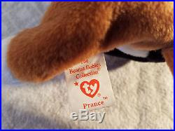 Super Rare Authentic TY Beanie Babies 1998 New Retired Chip PVC Cats Tag Errors