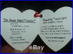 TY Beanie Baby BLACKIE The Bear 1994 Style 4011 -PVC-TAG ERRORS -NWT-VERY RARE