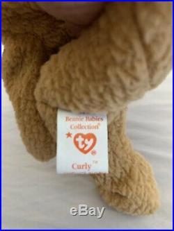 TY Rare Curly Beanie Baby Bear Errors! Original Series