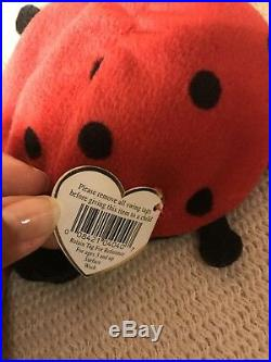 Ty Beanie baby Lucky! Rare! With Many Errors