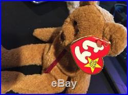 Ty ORIGINAL Beanie Baby CURLY BEAR MINT Condition RARE Retired Tag Errors
